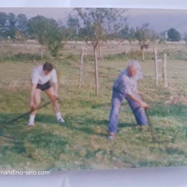 IZ ARHIVE: Ivan se uči kositi