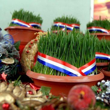 SVETA LUCIJA: Pripreme za Božić – sijanje pšenice