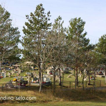 NAŠA OGNJIŠTA I NAŠA BAŠTINA: Vijest o smrti nenadanoj