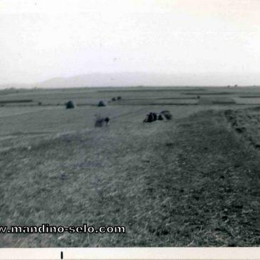 NAŠA ŠKOLA: Đačke sličice u riječi (1948. – 1953.) – VI. dio