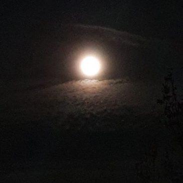 NIŠTARIJINI ZAPISI: Mjesec/ Mond