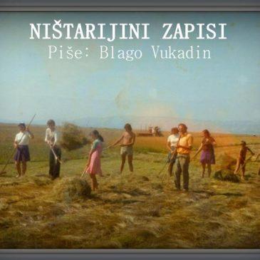 NIŠTARIJINI ZAPISI: Visoka Mandoseljka iz Banja Luke