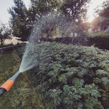 JAVNO KOMUNALNO PODUZEĆE: Odluka o racionalnoj potrošnji pitke vode