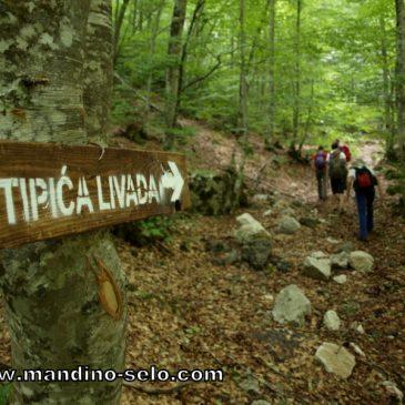"""DOLJANI – STIPIĆA LIVADA: """"Putovima naših poginulih"""" 28. srpnja"""
