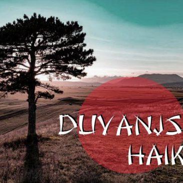 DUVANJSKI HAIKU: XIV. (2016.)
