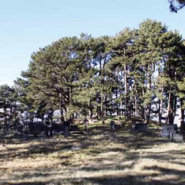 NAŠI SUSJEDI: Pravoslavna groblja
