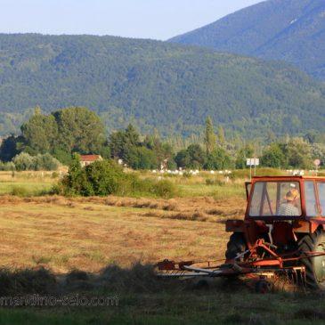 VLADA HBŽ: Obavijest poljoprivrednim proizvođačima